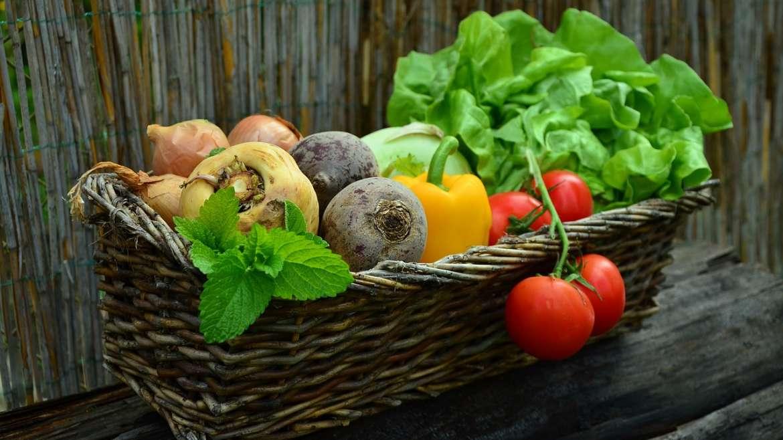 Quels légumes consommer en fonction de la saison ?